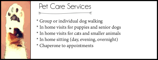 List of Pet care services